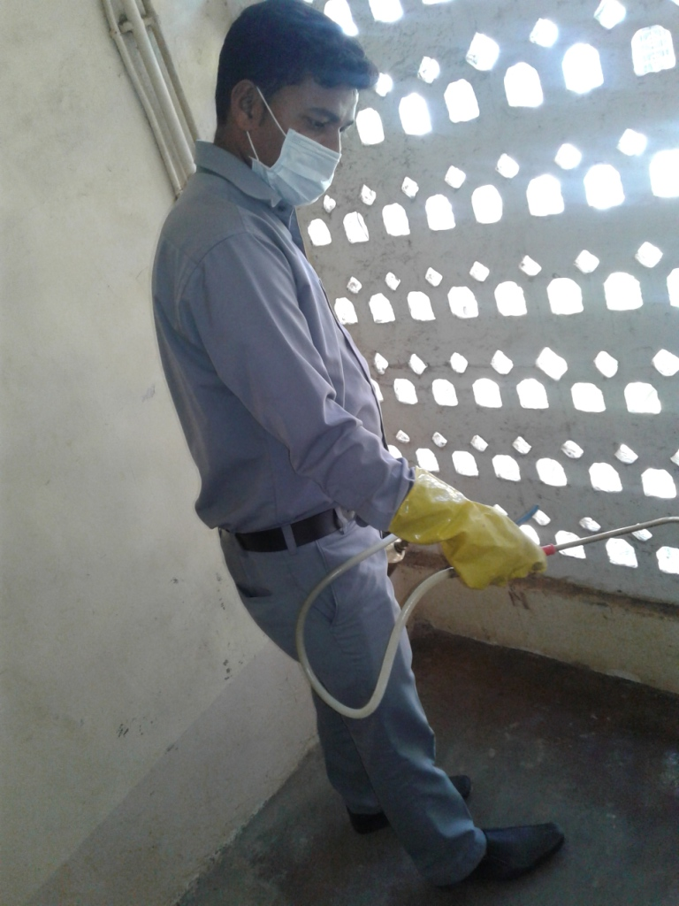 Pest Control in society staircase