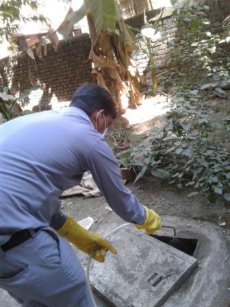 Society Manholes General Pest Control service